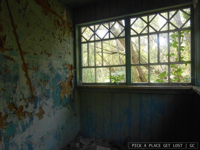 Chernobyl Exclusion Zone, Zalissya