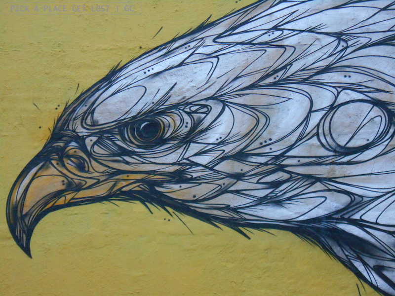 Bodø street art. Dzia, Golden Eagle